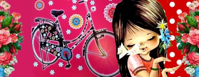 fietsstickers